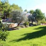 20villa luz - garden