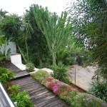 Jardin.1